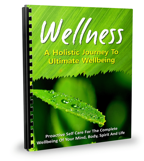 What Is Wellness E-Book