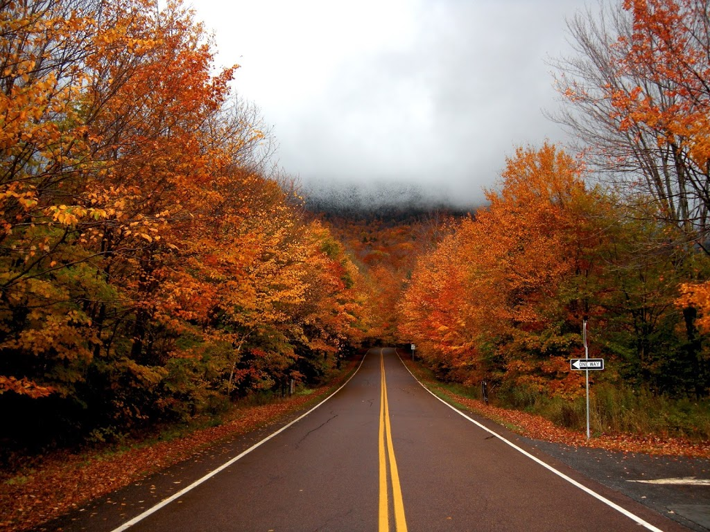 Fall Cape Cod Wallpaper Enjoy Vermont Foliage In A Toyota Of Your Choice For A Day