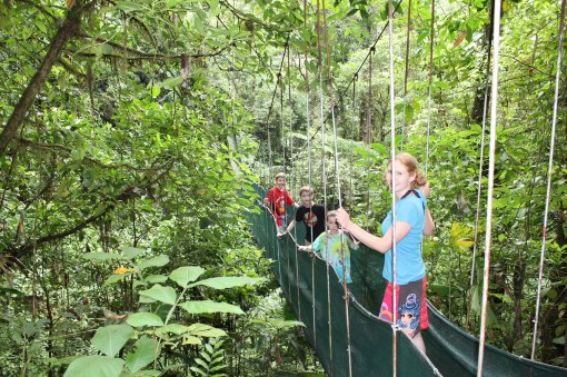 Hiking through the rainforests surrounding Arenal Volcano