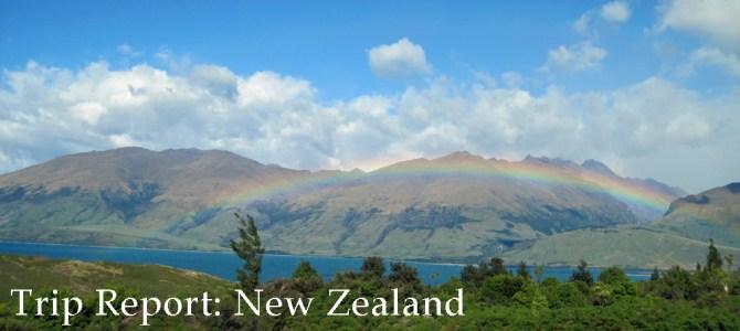 Trip Report: New Zealand 2011
