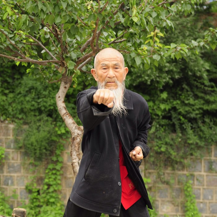 And elderly man with a long white beard extends a fist toward the camera in a wushu form.