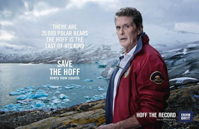 BBC_SaveTheHoff_poster3_polarbear