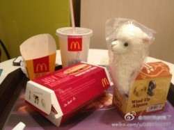 For a while, people were talking about a supposed Grass Mud Horse toy coming with McDonald's Happy Meals.