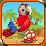 ZooZoo Scarlet Bird Escape