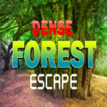 8b Dense Forest Escape