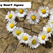 8B Daisy Heart Jigsaw