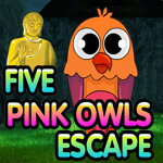 Five Pink Owls Escape