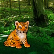 WOW Help the Lonely Tiger Cub