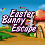 Knf Easter Bunny Escape