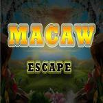 8b Macaw Escape
