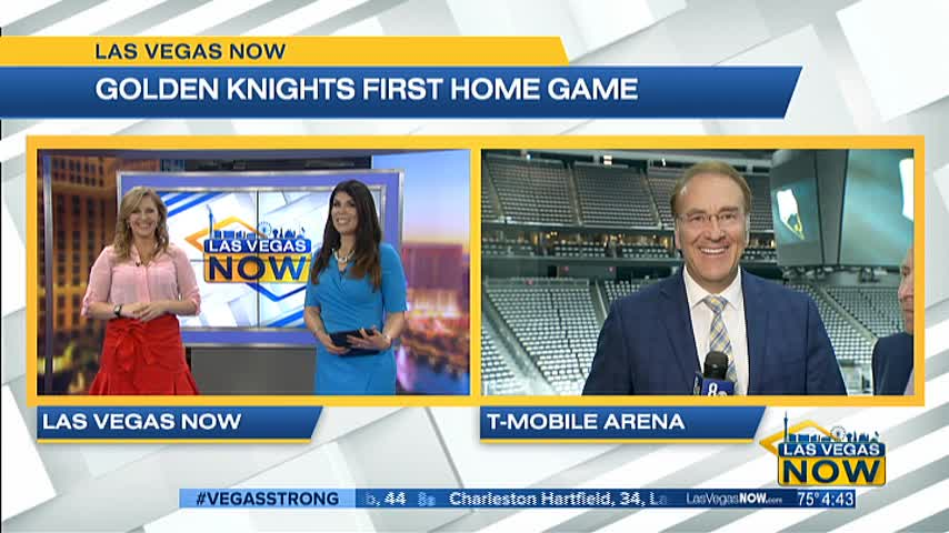 NHL commissioner Gary Bettman talks about the Golden Knights