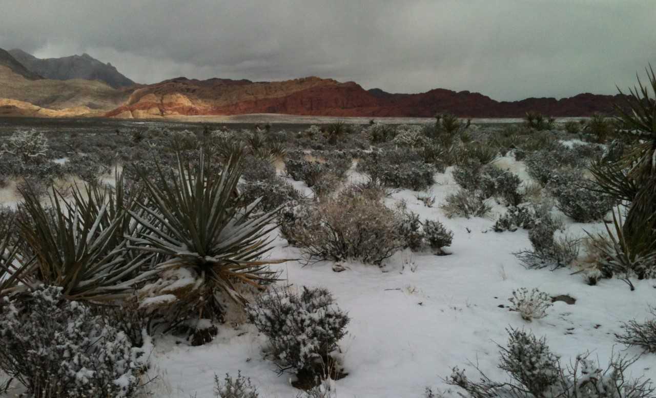 snow_at_red_rock_courtesy_of_Deb_Trinter_1519437991399.jpg