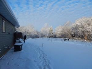 nov-snow