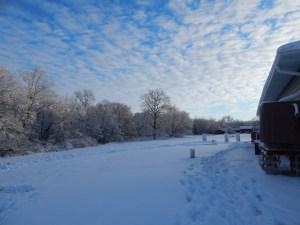 nov-snow2