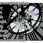 8-sorbos-de-inspiracion-cita-frida-kahlo-opinión-frases-célebres-citas-pensamientos-poemas-frase-tic-tac