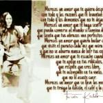 8-sorbos-de-inspiracion-cita-frida-kahlo-opinión-frases-célebres-citas-pensamientos-poemas-frase-mereces-un-amor