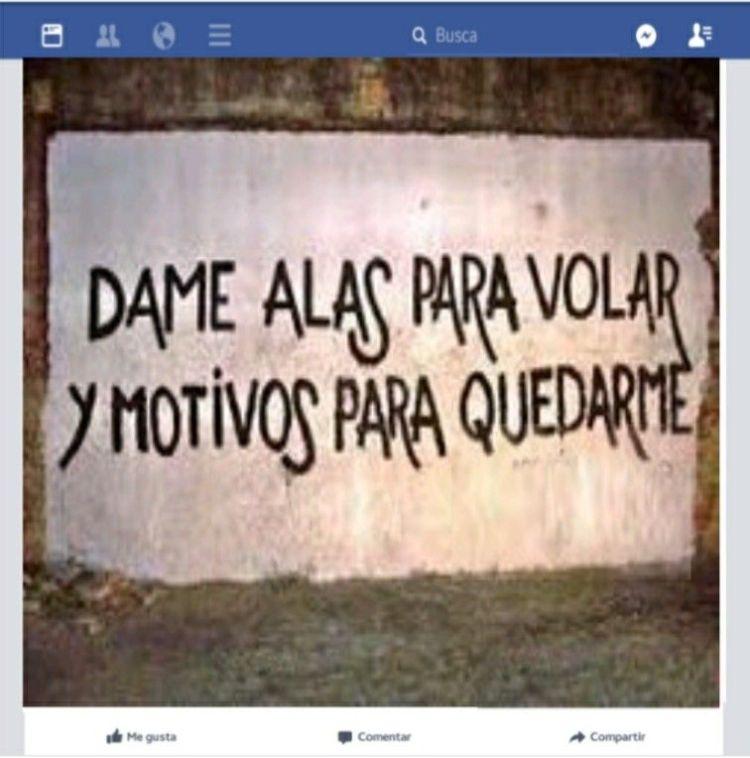 8-sorbos-inspiracion-tierra-de-brumas-cristina-lopez-barrio-libro-lectura-sinopsis-opinion-mi-momento-facebook