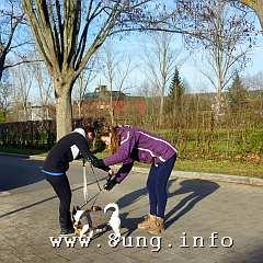 w.hunde.spielen.winter (2)aa