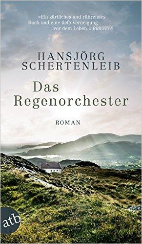 Cover: Das Regenorchester - Roman