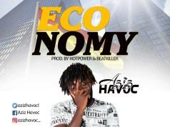 Aziz Havoc Economy