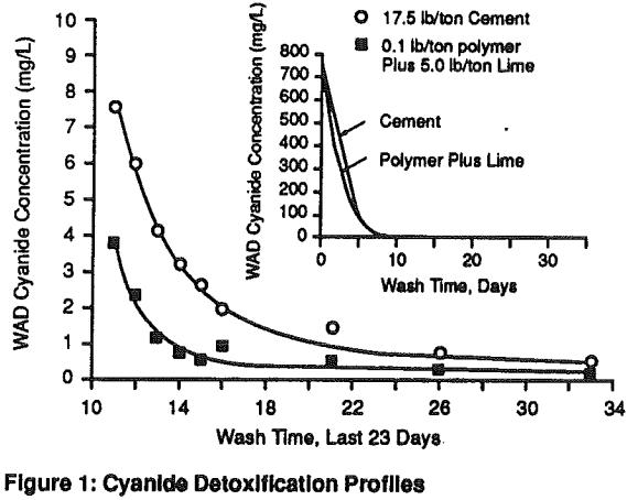 Polymer Agglomeration