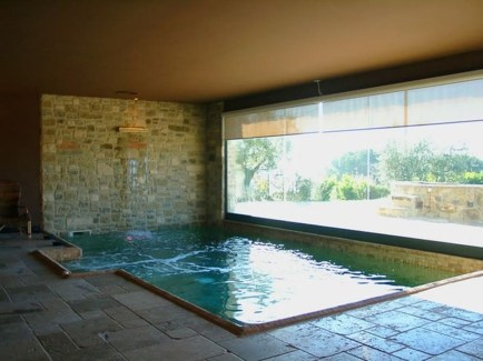 Adorable Small Indoor Swimming Pool Design Ideas 31