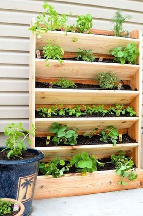 Stylish Vertical Garden Ideas For House37