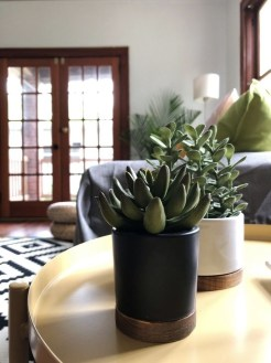 Astonishing Succulent Decoration Ideas For Living Room 06