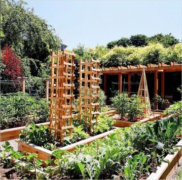Unusual Vegetable Garden Ideas For Home Backyard 27