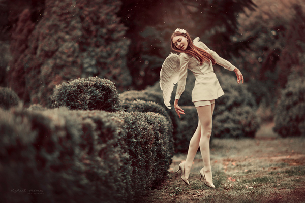 conceptual photography artists  4