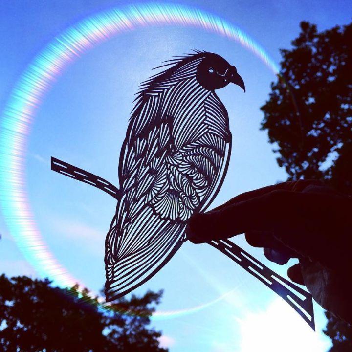 Pigeon paper cut art by Jo Chorny