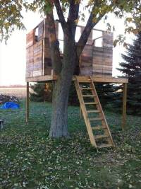 DIY Pallet House, Barn and Playhouse Plans
