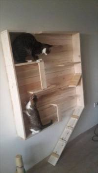 Reclaimed Pallet Cat Playhouse