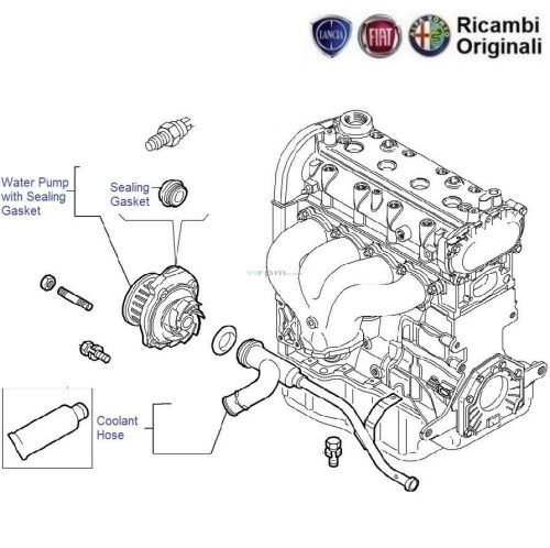 small resolution of fiat engine cooling diagram