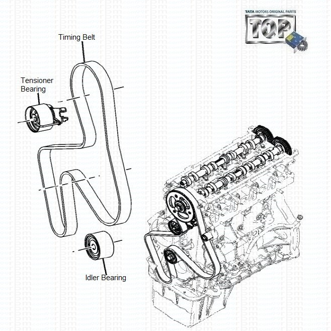 TATA Safari Storme: Timing Belt & Bearings