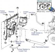 TATA Radiators & Hoses for Indica, Indigo, Safari, Strome