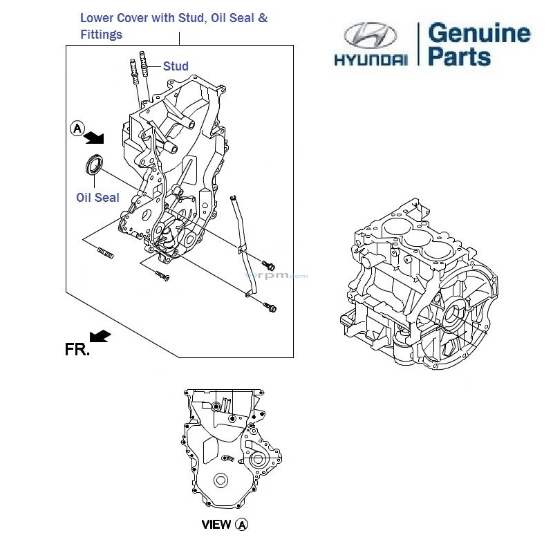 Hyundai Grand i10 1.0 Petrol: Timing Belt Cover, oil seal