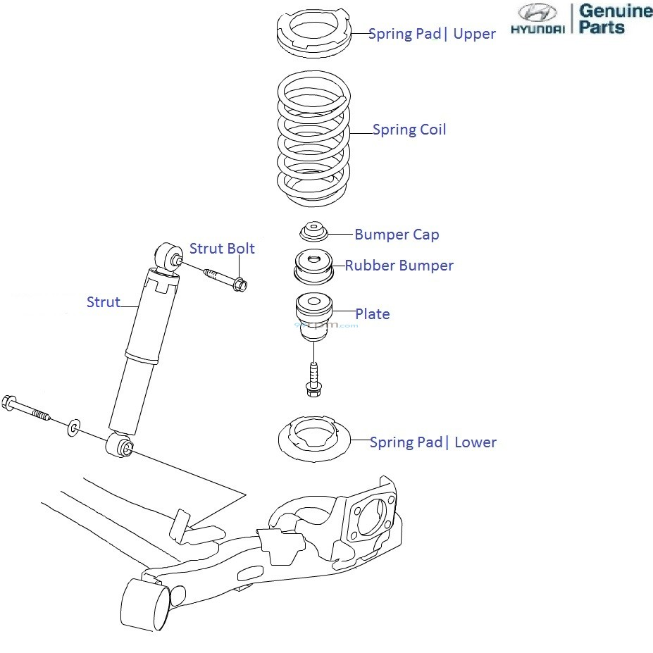 medium resolution of rear strut diagram