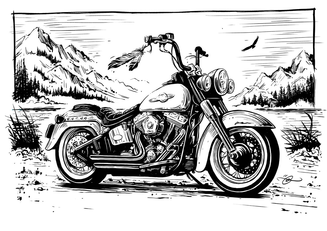 Harley Davidson Softail Illustration By Adi Gilbert