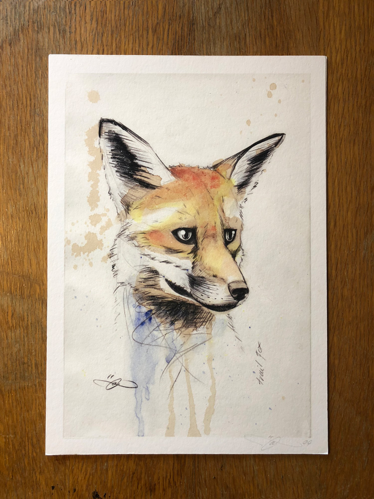 Trail Fox Print