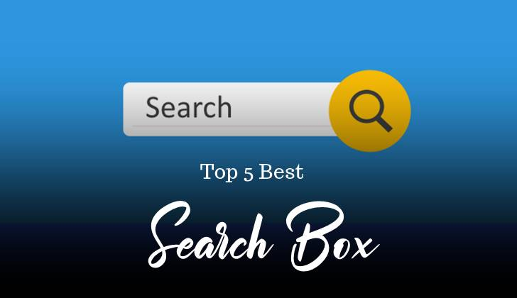 Top 5 Stylish Custom Search Box For Website