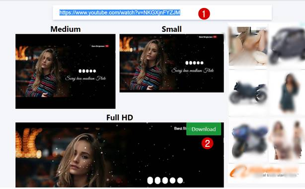 youtube video thumbnail downloader