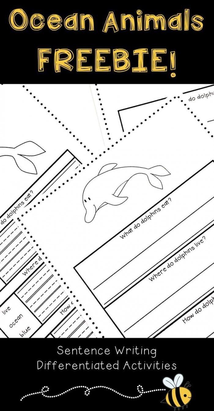medium resolution of Sentence Writing: Animals Worksheets   99Worksheets