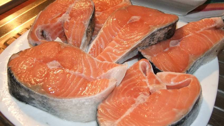 Odresci lososa