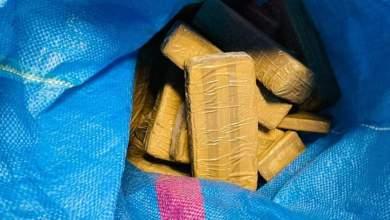 Photo of طنجة المتوسط.. حجز 50 كيلوغراما من المخدرات كانت على متن شاحنة