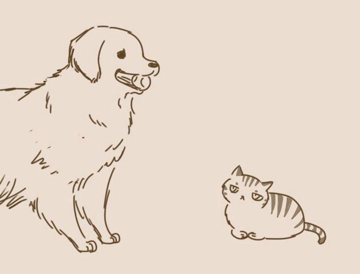 animal-friends-cat-dog-comics-lynal-11