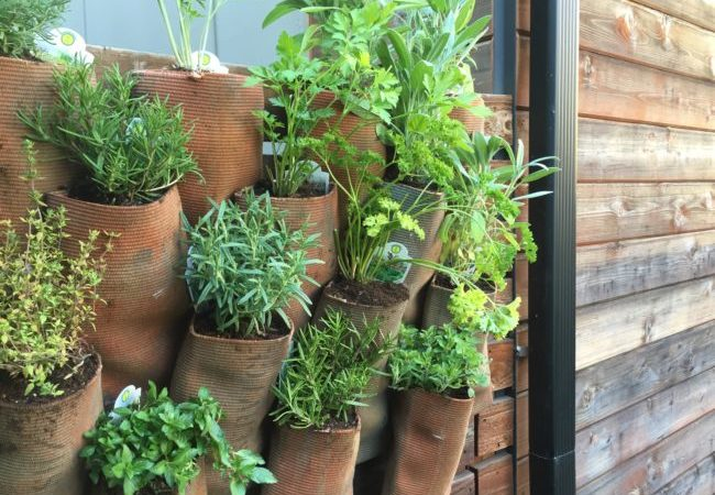 How You Can Use An Old Fire Hose To Make Vertical Gardening Pots