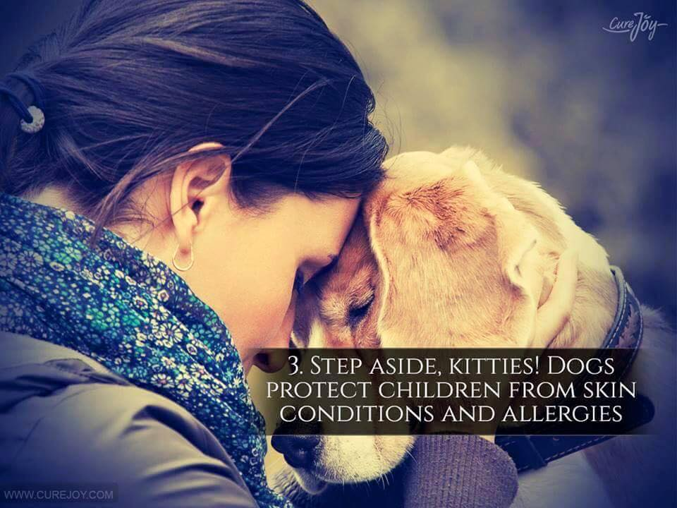 Reason-3-Step-Aside-Kitties-Dogs-Protect-Children-From-Skin-Condition-And-Allergies-via-9Mood