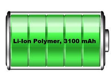 3100mAh_Battery