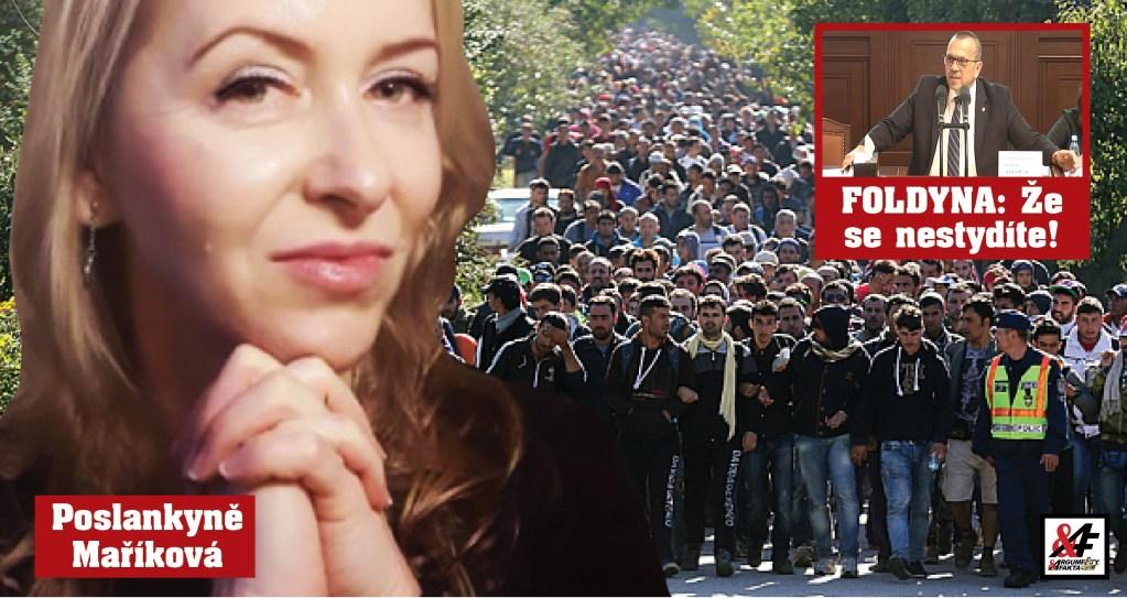 """""""Migranti jsou invazivní druh,"""" uvedla poslankyně Maříková. Kdo a jak hlasoval o jejím vydání policii. """"Předsudečná nenávist? Co je to za blbost!"""" Ostrý projev poslance Foldyny"""
